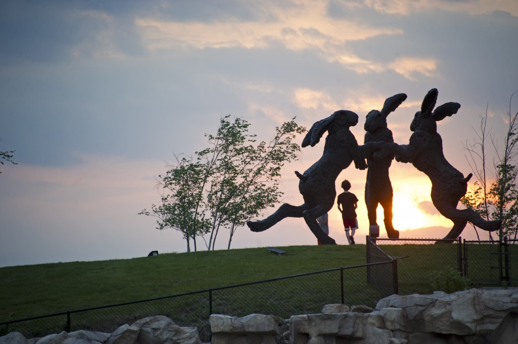 The dancing bunnies on a hill in Dublin, Columbus. Shot May 15, 2013 for Alive Summer Guide. (Meghan Ralston)
