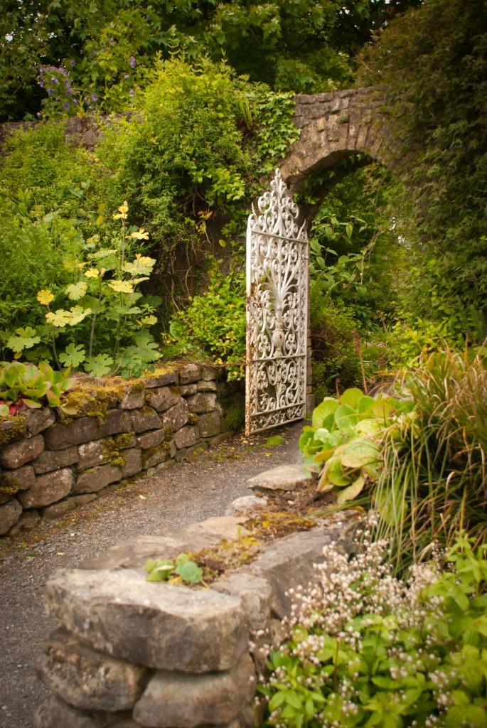 6_T_2009_Ireland-385